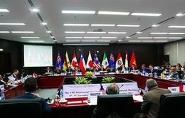 CPTPP và tác động đến nền kinh tế Việt Nam (19h, VTV1)
