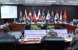 Các doanh nghiệp Việt Nam được hưởng lợi như thế nào từ CPTPP?