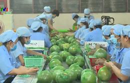 Từ 1/4, thêm điều kiện khi xuất khẩu hoa quả sang Quảng Tây (Trung Quốc)