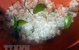 Trong tháng 4, các hiện tượng dông, sét, tố lốc, mưa đá sẽ gia tăng