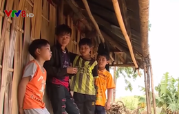 Nhức nhối tình trạng lao động trẻ em nông thôn bị bạo hành