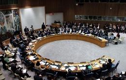 Nga phản đối dự thảo nghị quyết của Mỹ về Syria