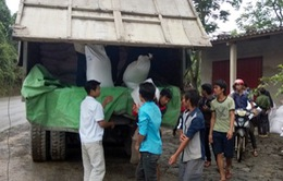 Hơn 550.000 học sinh nghèo nhận gạo hỗ trợ của Chính phủ