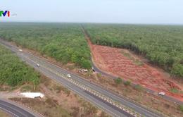 Khẩn trương tiến độ xây dựng sân bay Long Thành
