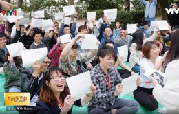 Hội Thanh niên - sinh viên Việt Nam tại Nhật Bản tổ chức ngày hội ngắm hoa anh đào