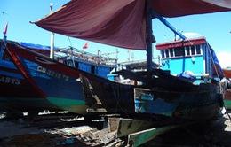 Quảng Bình hỗ trợ hơn 77 tỷ đồng cho các chủ tàu cá công suất lớn
