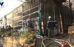 Đà Lạt: Hỏa hoạn thiêu rụi trung tâm nuôi trồng sâm Ngọc Linh