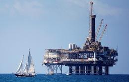 Căng thẳng thương mại Mỹ - Trung lắng xuống, giá dầu bật tăng