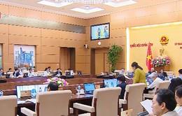 Thường vụ Quốc hội thảo luận về dự thảo Luật Đặc xá (sửa đổi)