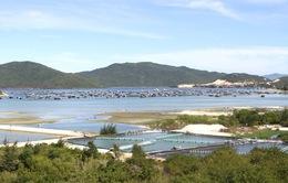 Khánh Hòa ngăn chặn tình trạng gom đất ở huyện Vạn Ninh