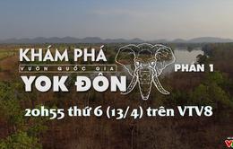 Khám phá vườn quốc gia Yok Đôn - Phần 1 (20h55 thứ Sáu, 13/4 trên VTV8)