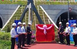 Gắn biển công trình chào mừng truyền thống ngành xây dựng cho hầm đường bộ Đèo Cả