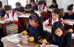 Gia Lai: Hơn 1.400 giáo viên trong tình trạng xét chấm dứt hợp đồng