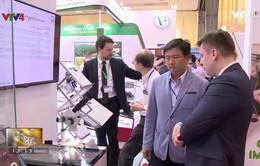 Các doanh nghiệp Nga tích cực tiếp cận thị trường Việt Nam