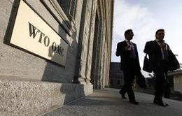 WTO cảnh báo các biện pháp trả đũa thương mại
