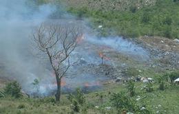 Nguy cơ cháy rừng trong mùa đốt rẫy ở các tỉnh Nam Trung Bộ