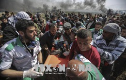 Bạo lực tái diễn dọc biên giới Gaza