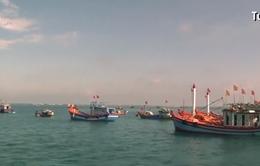 Agribank phản hồi về việc ngư dân đóng tàu Nghị định 67 đồng loạt kêu cứu
