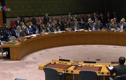 Hội đồng Bảo an Liên Hợp Quốc họp khẩn sau khi Mỹ tấn công Syria