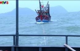 Nghệ An: Tiếp nhận và lai dắt tàu cá cùng 6 ngư dân Quảng Bình bị nạn trên biển vào bờ an toàn