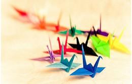 Nghệ thuật gấp giấy Origami: Biểu tượng văn hóa của Nhật Bản