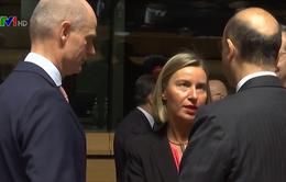 EU bất đồng về cuộc không kích Syria