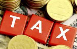 Tòa án Tối cao Mỹ thảo luận việc đánh thuế giao dịch trực tuyến
