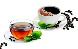 Cà phê và trà giúp bảo vệ gan