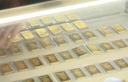 Bắt nghi phạm đột nhập tiệm vàng lấy trộm gần 100 lượng vàng