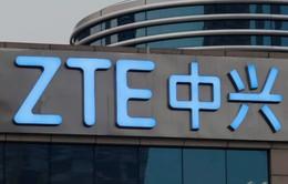 ZTE bắt đầu giao dịch cổ phiếu trở lại