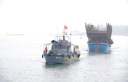 Cứu thành công 48 thuyền viên tàu cá Quảng Nam gặp nạn trên biển