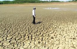 Khu vực Nam Trung Bộ bước vào giai đoạn khô hạn