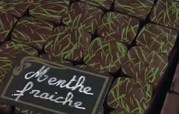 Ngọt ngào chocolate đảo Corse
