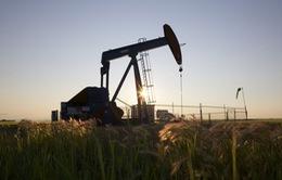 Căng thẳng Mỹ - Nga đẩy vàng, dầu tăng giá