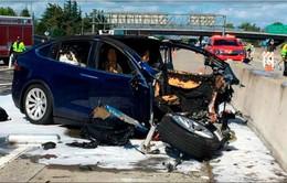 Dịch vụ xe tự lái tiếp tục gặp khó khăn