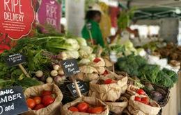 Chợ nông sản hữu cơ trên sa mạc