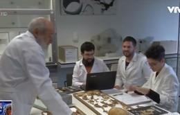 Phát hiện trường hợp ung thư trong xác ướp Ai Cập