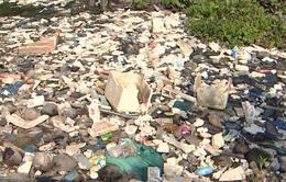 Người dân Sóc Trăng khốn khổ vì dòng kênh ô nhiễm kinh hoàng
