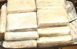 Myanmar bắt giữ 200kg ma túy