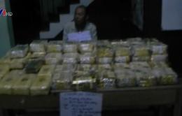 Bắt vụ vận chuyển ma túy lớn qua biên giới