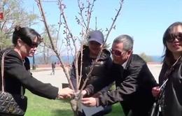 """Cộng đồng người Việt tại TP Odessa tổ chức """"Ngày thứ Bảy tình nguyện"""""""