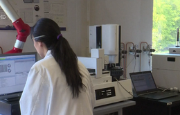 OPCW tìm kiếm manh mối vụ nghi tấn công hóa học ở Syria