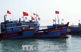 Thông báo tạm ngừng đánh cá của Trung Quốc là vô giá trị
