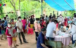Hơn 4.000 trường hợp mắc sốt rét trên cả nước