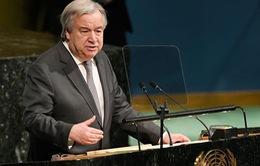 Tổng Thư ký Liên Hợp Quốc: Các quốc gia cần gắn kết chặt chẽ hòa bình với phát triển