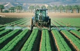 EU thông qua lệnh cấm sử dụng thuốc trừ sâu