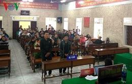 Phạt tù đối tượng giết hại động vật ở Vườn Quốc gia Phong Nha - Kẻ Bàng