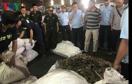 Phát hiện gần 3,8 tấn vảy tê tê tại Cảng Cát Lái