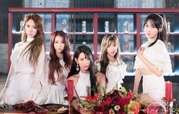 Mới ra mắt được nửa năm, nhóm nhạc Hàn Quốc đã phải tuyên bố tan rã