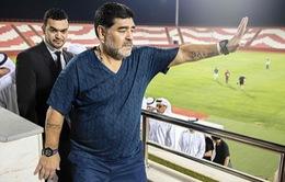 Không đưa đội bóng lên hạng thành công, Diego Maradona từ chức HLV
